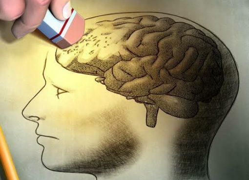 generasi cerdas milenial, stop digital amnesia